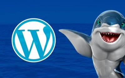 Pourquoi choisir le thème OceanWP pour WordPress ?